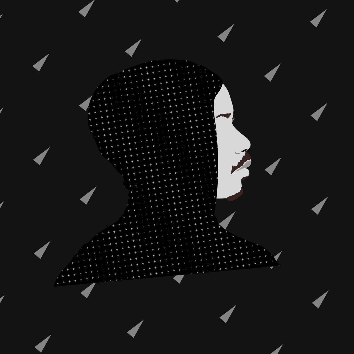 profil-ricochet-dark